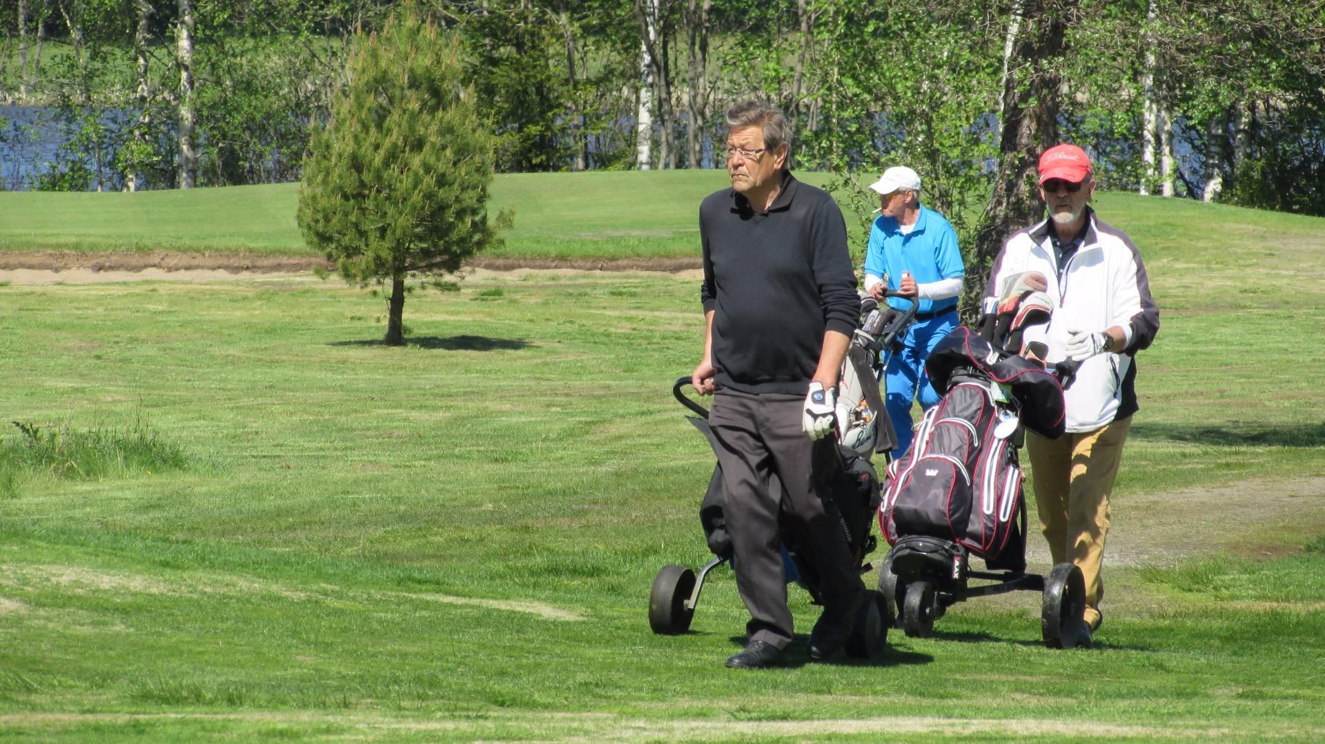 Golf 55+